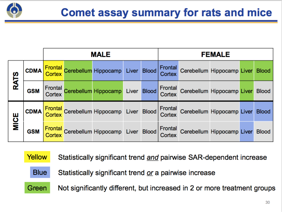 NTP Comet Assay Results